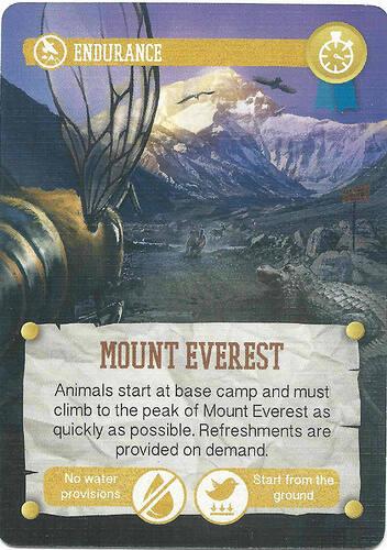 endurance-mount_everest